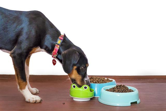 dieta psa